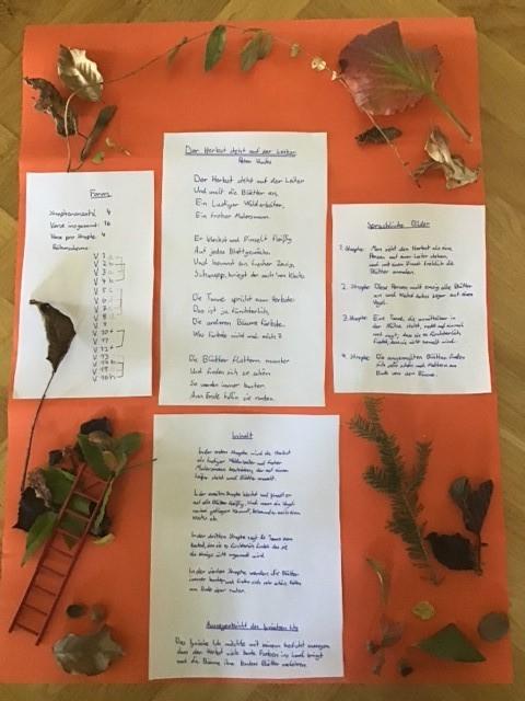 Gedicht Franz 5b