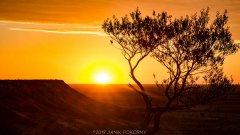 australien_janik_pokorny_2019_21_of_55-1_20190520_1185451092.jpg